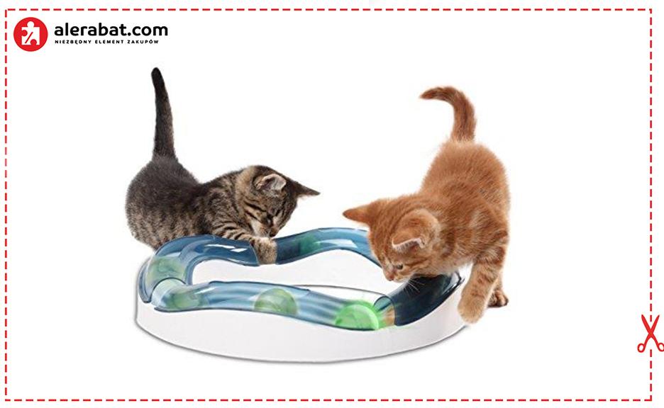Tor zabawkowy dla kota
