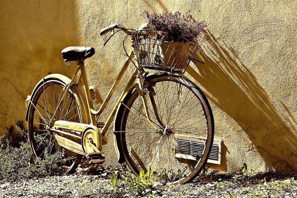 aktywność, rower, oferta,